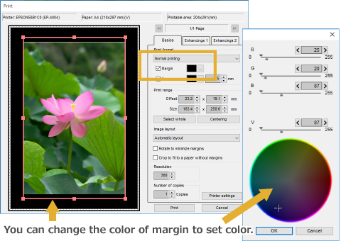 Assign a Color to Print Margins