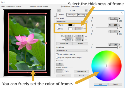 Add a Color Border to Photo Printing