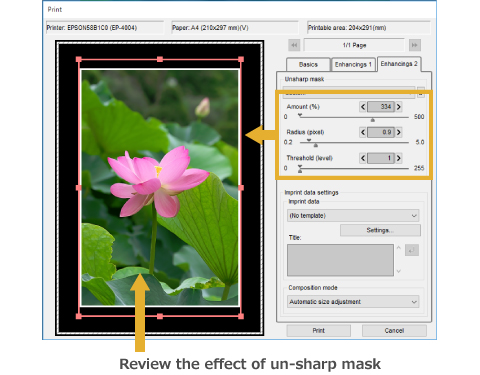 Unsharp Mask in Print Preview Dialog