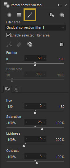 Brush Correction Filter or Paint Selection Tool